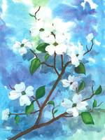 Dogwood in Watercolor Mixed-media Print