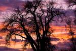 """County Sunset by James """"BO"""" Insogna"""