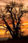 """Boulder County Sunset by James """"BO"""" Insogna"""