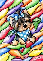 Yorkie In Candy Fish