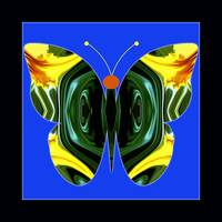 Abstract-Butterfly-5