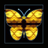 Abstract-Butterfly-1