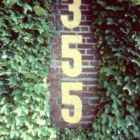 """355 IVY WRIGLEY FIELD"" by AKAYE"
