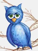 Sleepy Blue Owl