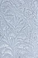 Frosted Drawing
