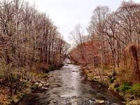 A look down Winters Run in Harford County, Marylan