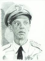 Don Knotts (barney fife)