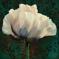 Poppy In Verdigris And Rust II