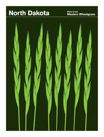 State Posters - North Dakota State Grass: Western