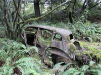 Old Car Rusting Away