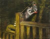 Raccoon Stealing Humingbird Feed