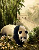 Panda Bear and the Great Wall of China