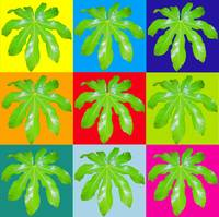 Multi-colored Giant Fern Leaves #2