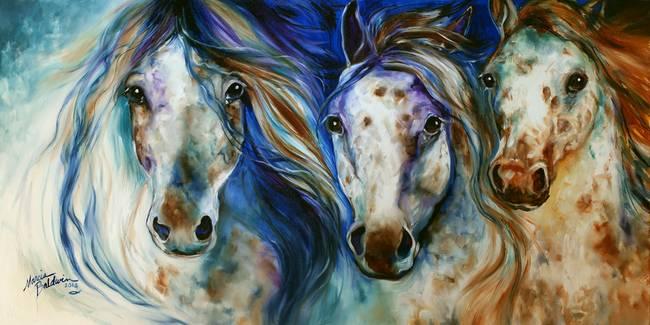 3 WILD APPALOOSA HORSES