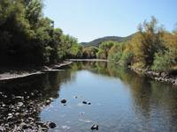 Gila River Early Spring