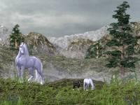 Unicorns in the Mountains