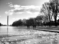 Washington in Winter, 2009 (Mono)