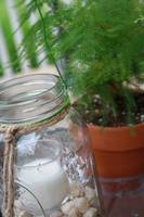 Mason Jar and Fern