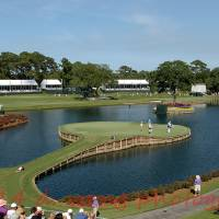 """17th Green at TPC Sawgrass"" by debby19"