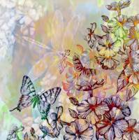 colorful floral, butterfly and dragonfly