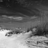 """""""Dunes Number 1"""" by philpenne"""