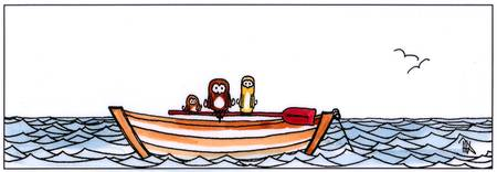 boat_owls
