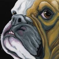 """""""english bulldog"""" by carlasmaleanimalart"""