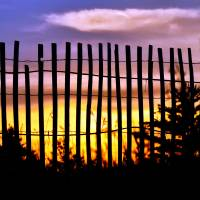 Fenced Sunset by Lisa Rich