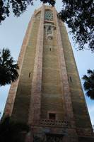 Bok Tower 8