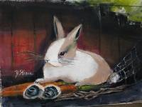The Dutch Rabbit