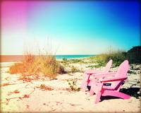 Pink Paradise Photography