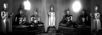 Seven Budda Black and White