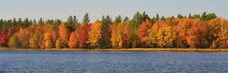 Autumn Lake Shore