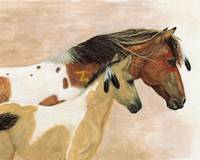 Buckskin Paints Majestic Horses