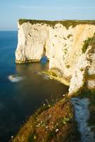Morning light at Old Harry Rocks