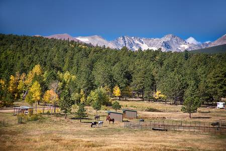 Colorado High Country Landscape