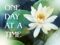 One Day at a Time Lotus One