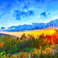autumn vibes by Alexandr Grichenko