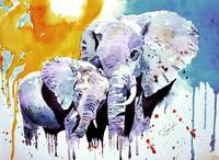 Love of Elephants