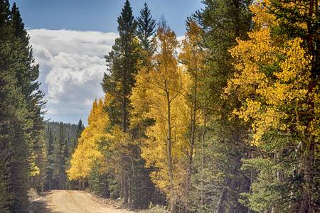 Back Road To Autumn