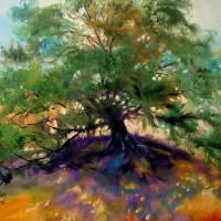 OAK TREE 002 by Marcia Baldwin
