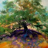 OAK TREE 002 by Marcia Baldwin