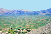 Cretan Plain by Priscilla Turner