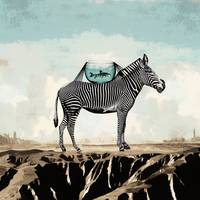 Zebra Friends Travelling the World