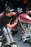 Pin striping HD shovelhead IMG_1137 (2)