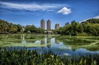 Central Park's Harlem Meer Summer Day