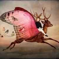 """Enjoy the Ride"" by Catrin-Stein"
