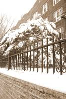 Brooklyn winter sepia
