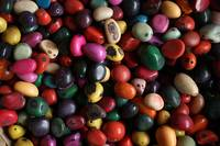 Colorful Tagua Nut Beads