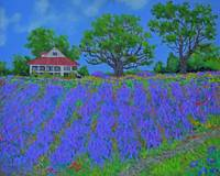 Low Country Lavender  - 16x20
